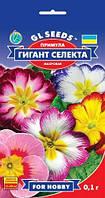 Примула Гигант селекта 0,1г  Gl seeds