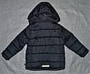 Куртка зимняя GAO серая (QuadriFoglio, Польша), фото 3