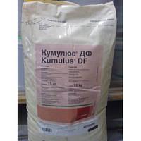 Кумулюс® ДФ, в.г.,100 гр.