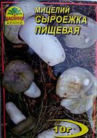 Мицелий гриба Сыроежка Пищевая, 10 г