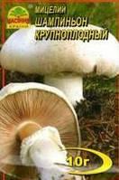 Мицелий гриба  Шампиньон Крупноплодный, 10 г