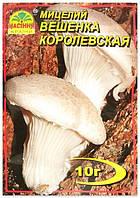Мицелий гриба Вешенка Королевская, 10 г
