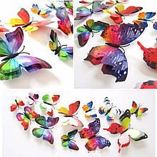 Объемные 3D бабочки на стену (обои) для декора (разноцветные)