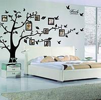 """Виниловая наклейка на стену """"Дерево для фотографий"""" Большая 200 см на 250 см"""