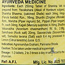 Шанкха Вати (Shankha vati, SDM Ayurveda Pharmacy), 40 таблеток - Аюрведа премиум качества, фото 3
