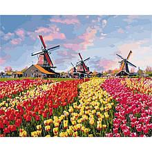 Картина за номерами Фарби Голландії