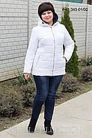 Зимняя куртка с капюшоном батал PK1-343, фото 1