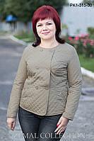 Весенняя легкая куртка PK1-315, фото 1