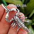 Мужской серебряный кулон Скорпион - Скорпион подвеска серебро, фото 3