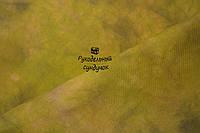 Ткань равномерного плетения ручного окраса А012