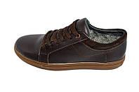Кеды кожаные зимние на меху Multi-Shoes Salvin Brown