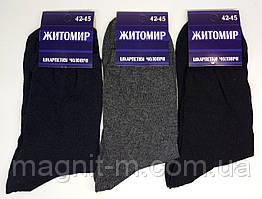 """Мужские  тонкие носки """"Житомир"""". Микс."""