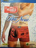 Мужские боксеры Veenice (L) ,хлопок ,классическая резинка, фото 5