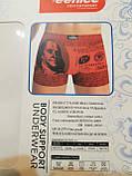 Мужские боксеры Veenice (L) ,хлопок ,классическая резинка, фото 6