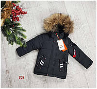 Зимняя куртка на 100% холлофайбере, размер , 803, фото 1