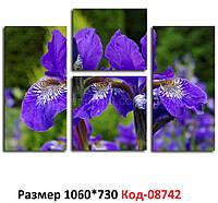 Модульна картина Ірис фіолетовий 1060*730 мм. Код-08742 Т-02
