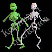 Резиновый скелет 18см
