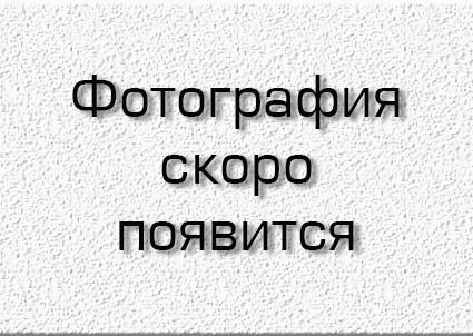 Зимняя блесна Mildas с подвесным тройником №13, никель, 30шт