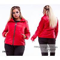 Куртка женская укороченная на молнии с карманами R-19078 красный