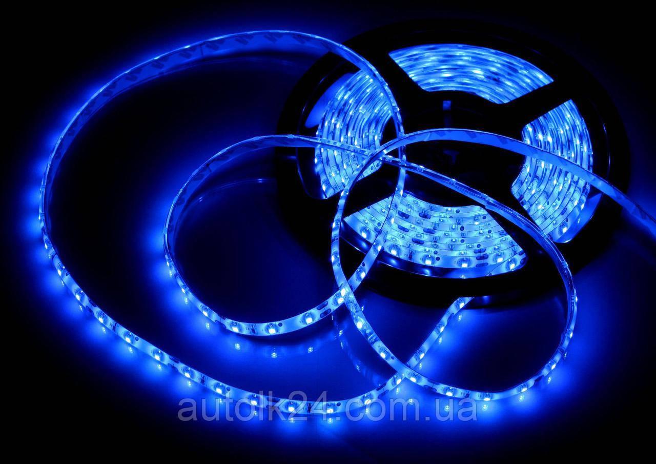 Светодиодная Led лента SMD 3528 24V (влагозащитная) цвет Синий (Bluе)