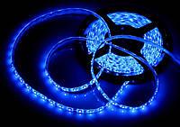 Светодиодная Led лента SMD 3528 24V (влагозащитная) цвет Синий (Bluе), фото 1