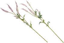 Декоративная ветка Астильбы, 81см, 2 вида - нежно-розовый, лавандовый