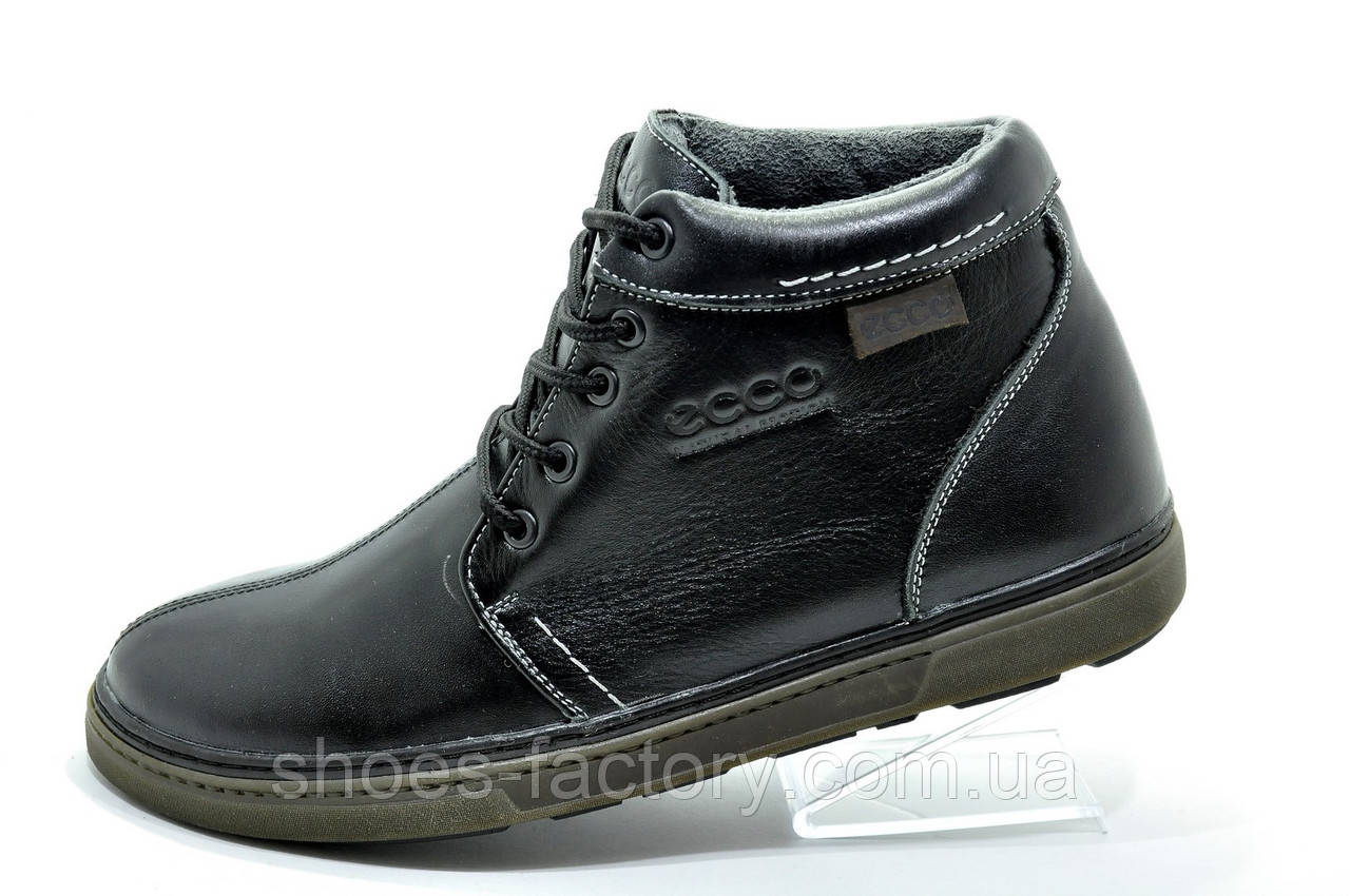 Ботинки зимние в стиле Ecco мужские на меху, Black
