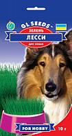 Зелень для собак Лесси богата витаминами для очищения пищеварительного тракта, упаковка 10 г