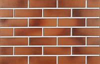 Клинкерная плитка Roben DARWIN PENF 38