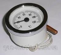 Термометр капиллярный круглый d-52мм (капиллярный термодатчик)