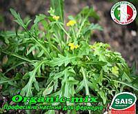 Руккола дикая ГУДИТТА от ТМ Sais (Италия) (проф. пакет 500 грамм) Мелкозубчатые листья, фото 1