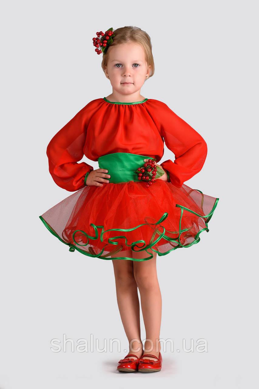 773ce5ff88000 Карнавальный костюм для девочки Калина напрокат, цена 150 грн./сутки,  заказать Софиевская Борщаговка, ЖК