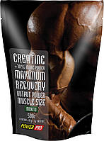 Power Pro Creatine Maximum Recovery with flavour500 gвиноград