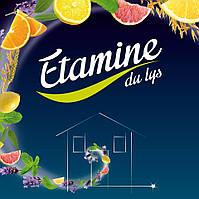 Новая поставка органических бытовых средств Etamine du Lys!