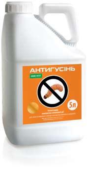 Инсектицид Антигусинь