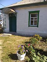 Дом в селе Петриковка ул. Косенка на участке 62 сотки.