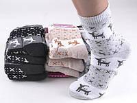 """Носки женские теплые """"Житомир"""" с оленями. Размер 36-42. В упаковке 3 пары"""