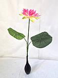 Лотос  одиночка 75 см, фото 3