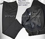 Теплые брюки, штаны мужские.Трикотаж начес., фото 4