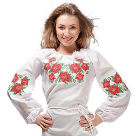 Вишиванки блузи та сорочки