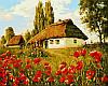 Картины по номерам 40×50 см. Маков цвет Художник Геннадий Колесной