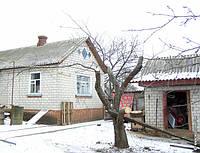 Обрезка старого сада, омоложение плодовых деревьев