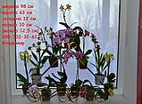 """Підставка для квітів на 11 кілець """"Піраміда-4"""", фото 2"""