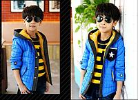 Осенняя куртка на мальчика Д 0698-И, фото 1