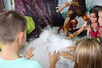 Химическое ШОУ, шоу с сухим льдом, фото 1
