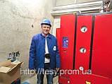 Парогенератор электрический ТЕСИ АПГ-Э 420/335, фото 3