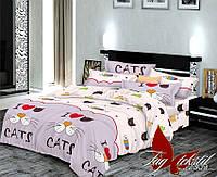 1,5-спальный комплект детского постельного белья R2309