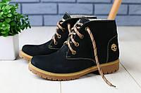 Зимние натуральные ботинки женские в стиле Timberland,натуральный нубук,темно-синие ,набивная овчина