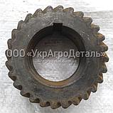 Шестерня колінчастого Д-65 ЮМЗ Д03-005 (каленная), фото 2