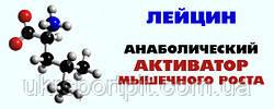 В ассортименте появилась аминокислота Лейцин